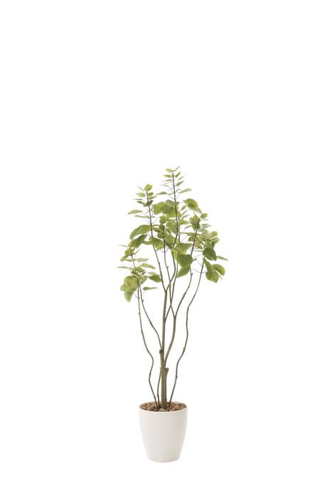 光の楽園 フィカスブランチツリー1.3 723A180 2020年版 アートグリーン 人工観葉植物 光触媒