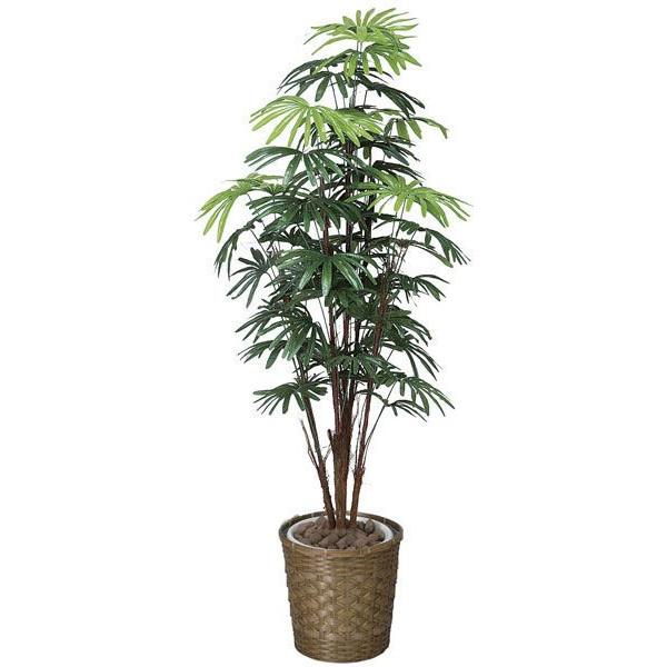 光の楽園 シュロチク1.6 鉢変更 500E350 2020年版 アートグリーン 人工観葉植物 光触媒