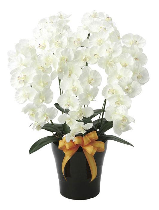 光の楽園 プレミアム胡蝶蘭5本立W 651A180 2020年版 アートフラワー 造花 光触媒