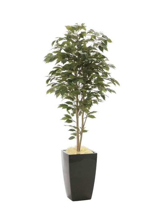 光の楽園 ア-バンベンジャミン1.8 946A600 2020年版 アートグリーン 人工観葉植物 光触媒