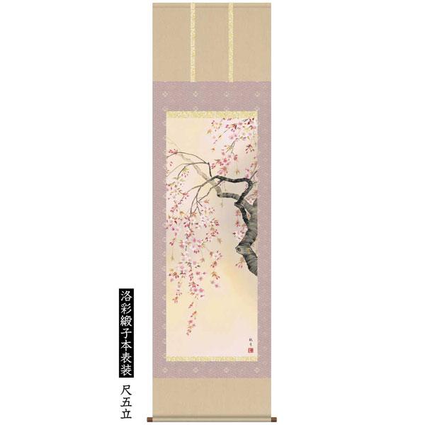 掛け軸 森山観月作 洛彩緞子本表装 尺五立 デジタル版画 桜花爛漫 花鳥画 A6-09A