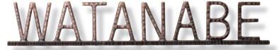 【表札】アイアン文字(丸棒) ブロンズメッキ仕上 IR-117サビ 変色 に 強い人気のある 真鍮製のニュープラスアイアンサイン をお求めやすい 価格で!【戸建】【ネームプレート】福彫 【★送料無料】