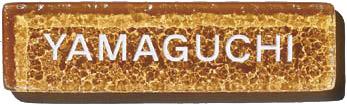 【表札】ウォーターガラス リトル 色:オレンジペコ GT-11屋外 における ガラス の 美しさ を極めた 硝子表札 をお求めやすい 価格で!【戸建】【ネームプレート】美濃クラフト【★送料無料】