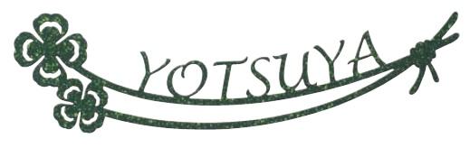 【表札】ステンレス LL-4 色:いぶしグリーン幅の狭い 門柱や、口金 ポスト の上部など限られた スペース に.。人気 の サイン をお求めやすい 価格で!【戸建】【ネームプレート】美濃クラフト【★送料無料】