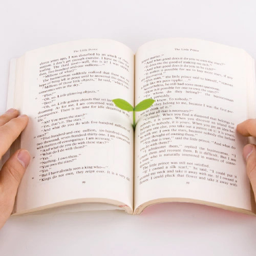 文房具 プレゼント おもしろ シリコン製のかわいい新芽のようなブックマーク ブックマークとして使えば おしゃれなアイテムです小さい デザイン 楽しい 今ダケ送料無料 しおり メール便 スプラウト DESIGN 栞 ブックマーク おもしろ文具 Sprout かわいい DOO クローバー STUDIO 新芽 WakuWaku [ギフト/プレゼント/ご褒美]