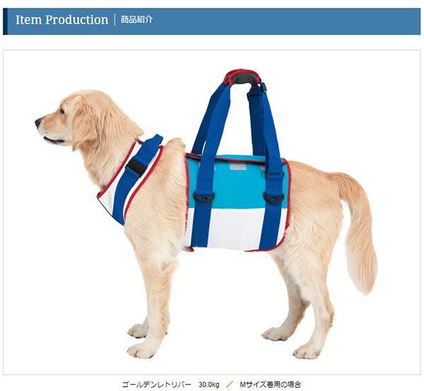 わらの犬 2011