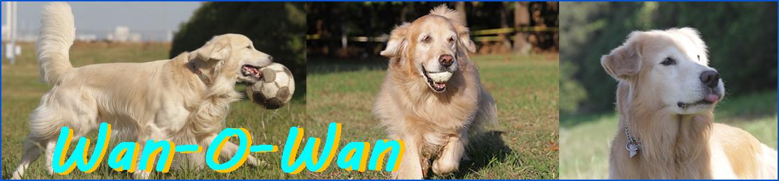 Wan-O-Wan楽天市場店:ドッグフード、サプリメント、トリミング用品等をお求め安い価格で。