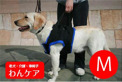 歩行補助ハーネス(前足用) M(胸周り45.5-63.5cm )介護用【ウォークアバウト】 ペット 介護用品【送料無料】 老犬 高齢犬 わんケア 【犬用介護用品】ペットグッズ 前肢 前脚