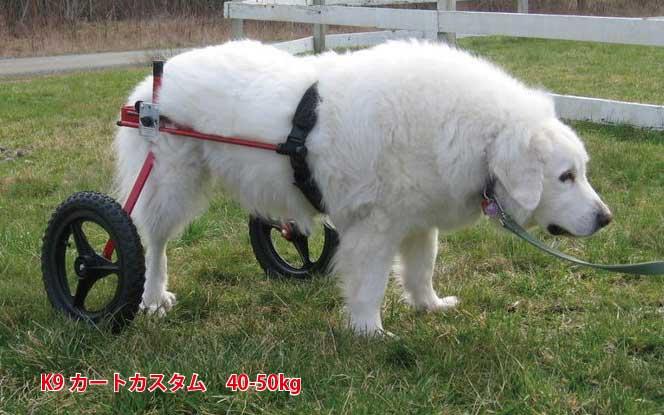 K-9カスタム車椅子(2輪) 体重40.1~50kg用 ペット 介護用品【送料無料】 老犬 高齢犬 わんケア 【犬用車イス】【犬用車椅子】ペットグッズ 犬用カート 歩行器