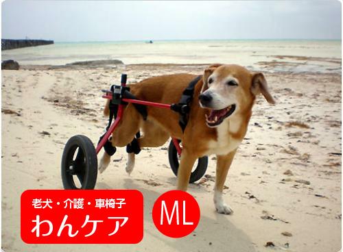 【試乗車あり】犬の車椅子 K9カートスタンダード 後脚サポート ML(18~22kg)用  ダルメシアン ラブラドール介護用品 送料無料 老犬 高齢犬 わんケア 犬用 車椅子 車いす カート【大型犬用車椅子】バギー 後肢 後足 歩行器 犬 介護 老犬 高齢犬 ペット リハビリ