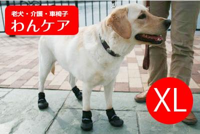 ウォーカーブーツ(保護ブーツ) 1ペア XL【ペット用介護用品】【送料無料】 老犬 高齢犬 わんケア 【大型犬用介護用品】ペットグッズ 02P27May16