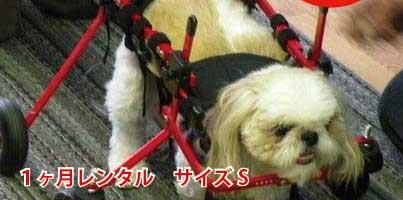 組み立てや調整もメールや電話でサポート 老犬のリハビリや足腰の弱った犬にぴったりの犬用車椅子 試乗車の貸出は問い合わせを 1カ月レンタル延長 4輪の犬の車椅子 K9カート スタンダードS 5.1~11kg 用 パグ ポメラニアン 介護用品 老犬 高齢犬 車いす 補助 小型犬 カート レンタル 歩行 後肢 後足 ペット 新品未使用正規品 全国一律送料無料 車椅子 犬用 犬 歩行器 バギー
