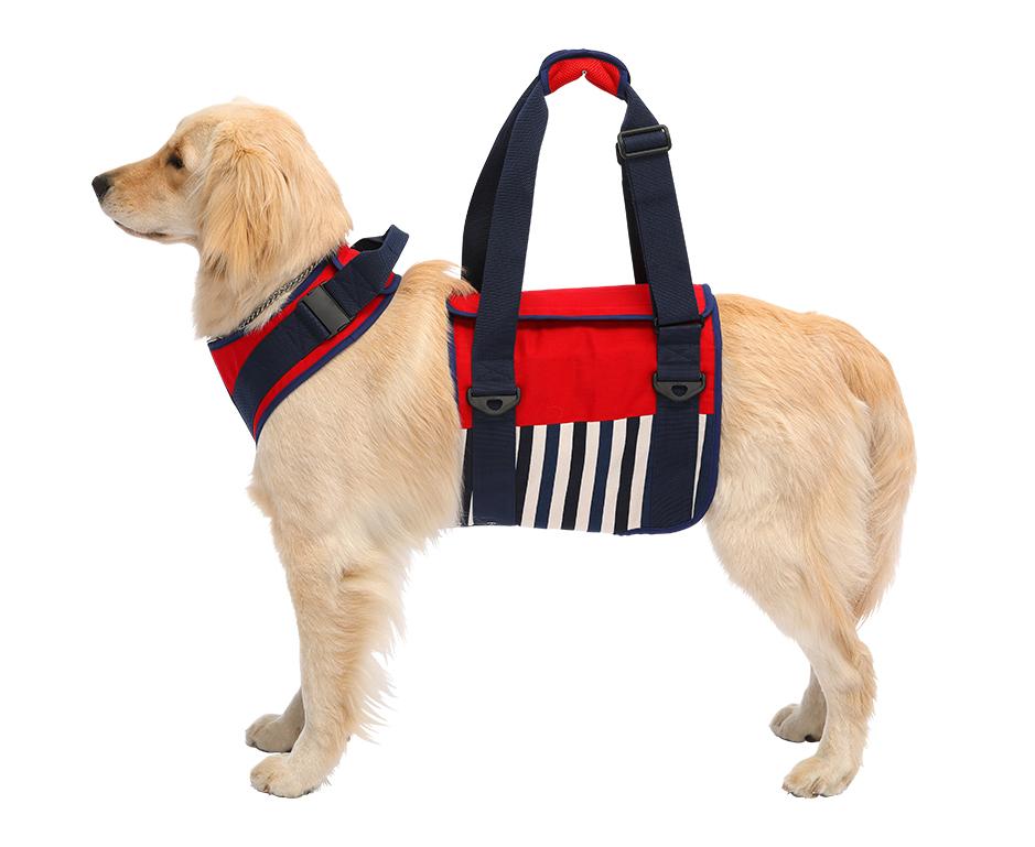 脚力が低下したワンちゃんの起き上がりを助け、歩行を補助するハーネスです。飼い主が補助をして散歩を続けてあげることで愛犬の筋力を維持する効果につながります 歩行補助ハーネス 大型犬用 ナチュラルマリン 大型犬介助ハーネス 大型犬介護ハーネス
