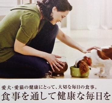 ブリスミックス 犬 ラム 羊肉 小粒 3kg ドッグフード 無添加 アレルギー ドライ 安全   皮膚 痒み予防 KMT アーテミス 送料無【ラッキーシール対応】