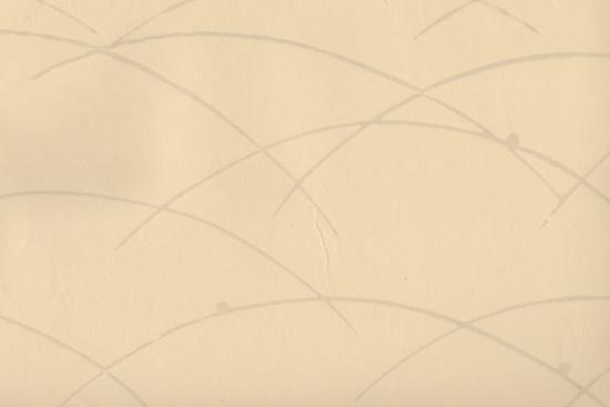 ふすま紙 壁紙 ふすま 壁 張り替え モダン おしゃれ 高級 649 江戸からかみ