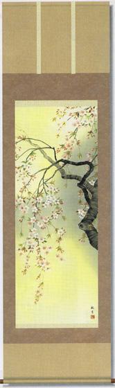 桜花爛漫 掛軸