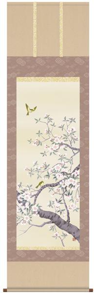桜花 掛け軸