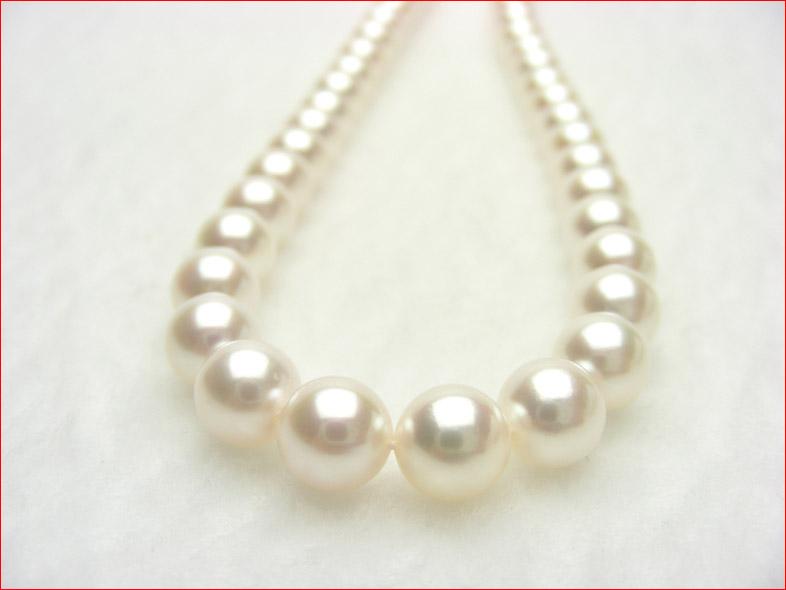 あこや真珠ネックレス 7-7.5ミリ 01037606 \220000→\88000