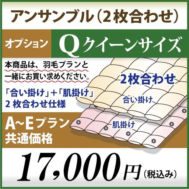 クイーンサイズ オプション アンサンブル(2枚合わせ)仕様 A~Eプラン共通価格