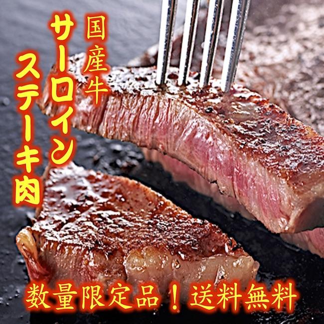 サーロイン ステーキ 国産牛サーロインステーキ 150g×4枚 ご贈答 送料無料 ギフト 冷凍 サーロイン ステーキ 焼肉 牛肉 誕生日 贈り物 BBQ お得 セール 最安値