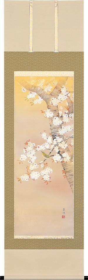 掛け軸 掛軸(かけじく) 桜に小禽(河村 東陽) 全国送料無料無料 代引き手数料無料 桜(さくら) 花鳥画 小鳥 春用掛軸