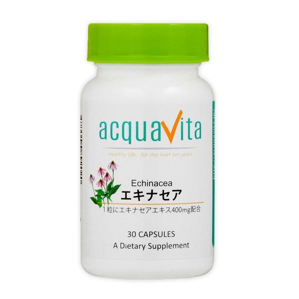 エキナセア (24個セット)][aquavita(アクアヴィータ) エキナセア (24個セット)], フィルターチャンネル:17c54bcc --- officewill.xsrv.jp
