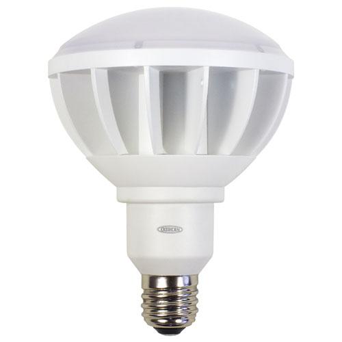 【送料無料】日動工業 ハイスペックエコビック50W 口金式 電球色 ワイド 白 L50W-E39-WW-30K-N