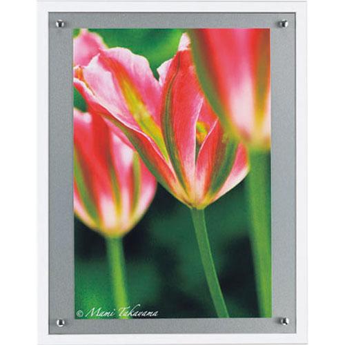 【送料無料】オリジン アートポスター 高山マミ ナチュラルフラワー04 HS-7036