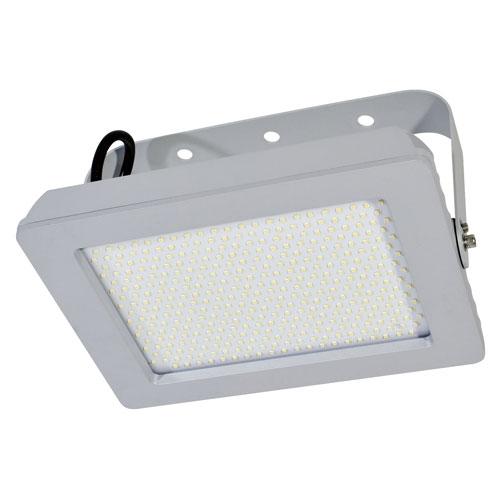 【送料無料】日動工業 LEDホールライト 120W LH120-AW-50K