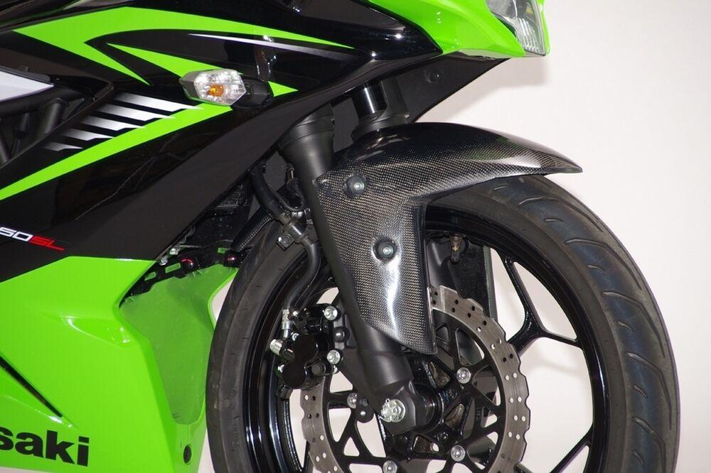 COERCE コワース RS フロントフェンダー Ninja250SL Z250SL