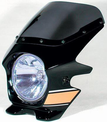 N PROJECT Nプロジェクト エヌプロジェクト ビキニカウル・バイザー ブラスターII エアロスクリーン カラー:メタリックスパークブラック(ストライプ/複色仕上げ) グラフィック:フライングドラゴン(22222)