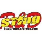 STING R&D スティングアールアンドディー ビキニカウル・バイザー カーボン製ビキニアッパー KZ1000 全年式