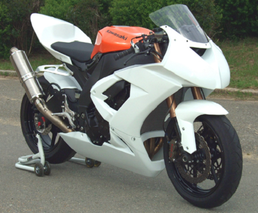 CLEVER WOLF クレバーウルフ フロントフェンダー ZX-10R