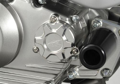 AGRAS アグラス エンジンカバー オイルフィルターカバー カラー:チタン Dトラッカー125