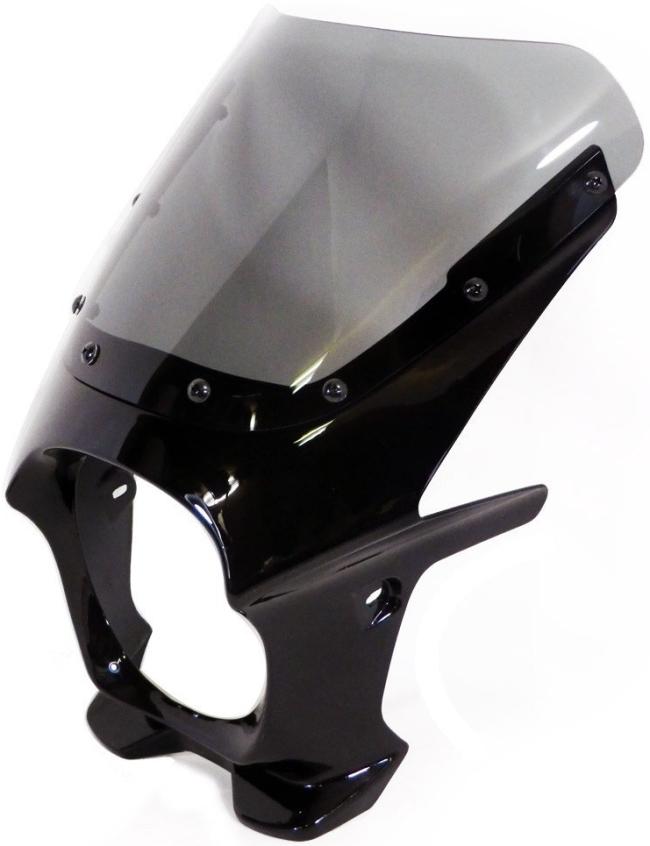 World Walk ワールドウォーク ビキニカウル・バイザー 汎用ビキニカウル DS-01 カラー:メタリックスパークブラック スクリーンカラー:クリア スクリーンタイプ:AERO