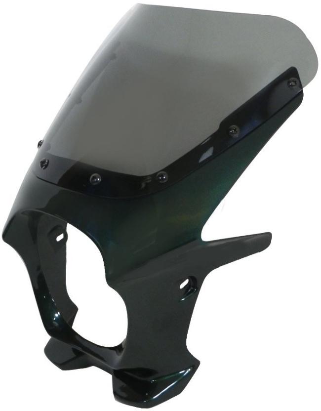World Walk ワールドウォーク ビキニカウル・バイザー 汎用ビキニカウル DS-01 カラー:ルミナスウィンザーグリーン スクリーンカラー:クリア スクリーンタイプ:AERO