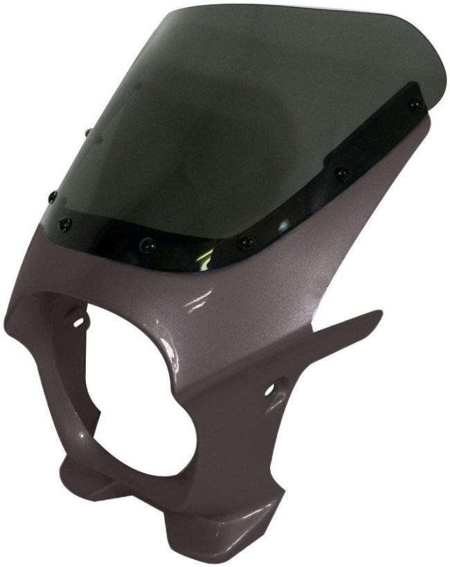 World Walk ワールドウォーク ビキニカウル・バイザー 汎用ビキニカウル DS-01 カラー:ギャラクシーシルバーメタリック スクリーンカラー:スモーク スクリーンタイプ:AERO