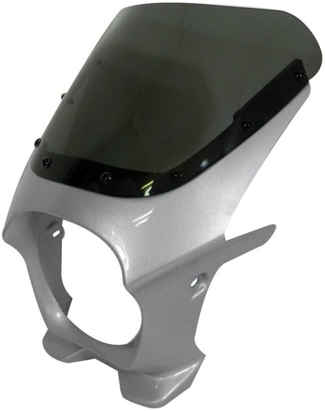 World Walk ワールドウォーク ビキニカウル・バイザー 汎用ビキニカウル DS-01 カラー:シルバー3 スクリーンカラー:クリア スクリーンタイプ:AERO