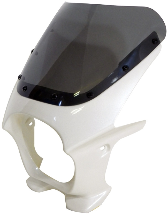 World Walk ワールドウォーク ビキニカウル・バイザー 汎用ビキニカウル DS-01 カラー:パールミルキーホワイト スクリーンカラー:スモーク スクリーンタイプ:AERO