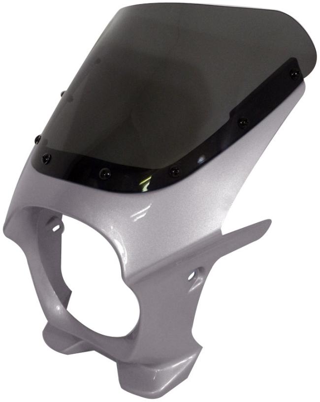 World Walk ワールドウォーク ビキニカウル・バイザー 汎用ビキニカウル DS-01 カラー:フォースシルバーメタリック スクリーンカラー:クリア スクリーンタイプ:AERO