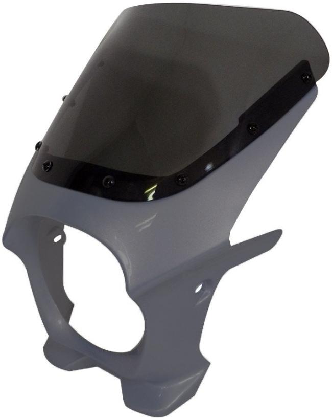 World Walk ワールドウォーク ビキニカウル・バイザー 汎用ビキニカウル DS-01 カラー:マットビュレットシルバー スクリーンカラー:クリア スクリーンタイプ:R