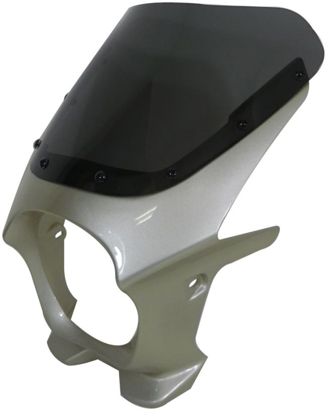 World Walk ワールドウォーク ビキニカウル・バイザー 汎用ビキニカウル DS-01 カラー:メタリックシャンパンゴールド スクリーンカラー:スモーク スクリーンタイプ:R