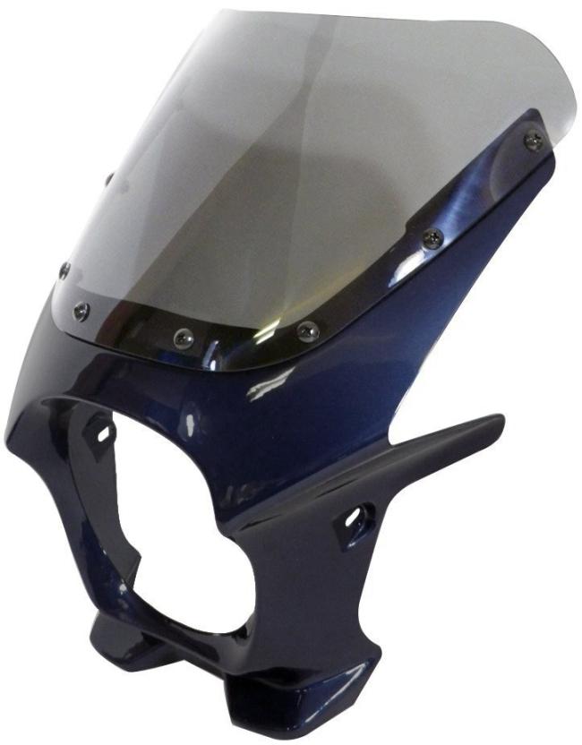 World Walk ワールドウォーク ビキニカウル・バイザー 汎用ビキニカウル DS-01 カラー:メタリックノクターンブルー スクリーンカラー:クリア スクリーンタイプ:R
