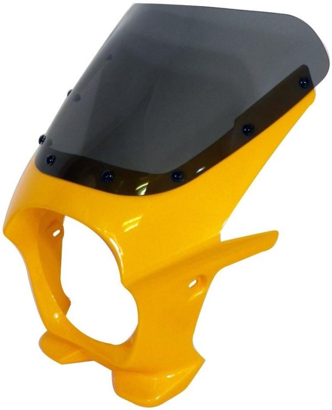 World Walk ワールドウォーク ビキニカウル・バイザー 汎用ビキニカウル DS-01 カラー:レディッシュイエローテクテル1 スクリーンカラー:クリア スクリーンタイプ:R