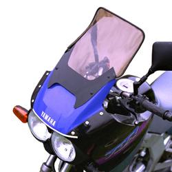 SECDEM セクデム ハイプロテクション・スクリーン カラー:ライトスモーク TDR125