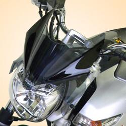 SECDEM セクデム スタンダード・フライスクリーン カラー:グレースモーク 400 06-10 GSR600