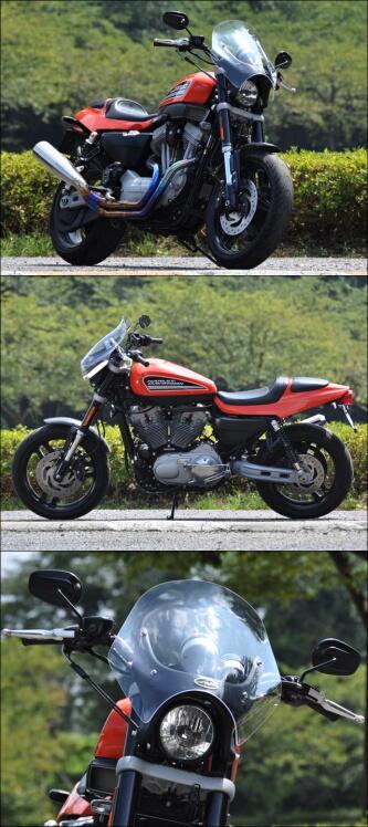 CHIC DESIGN シックデザイン ガイラスポーツシールド XR1200