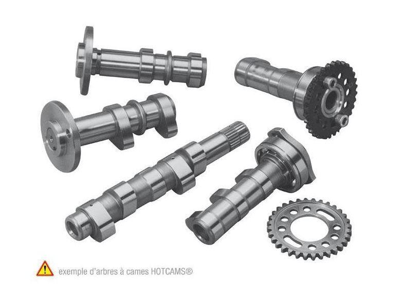 HOT CAMS ホットカムズ HOTCAMS カムシャフト ステージ2 KTM SX250F【Hotcams camshaft stage 2 KTM SX250F】【ヨーロッパ直輸入品】 SX-F250 (250) 14-15