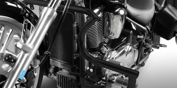 Dimotiv ディモーティヴ ガード・スライダー エンジンガード (Engine Guard) バルカン900 バルカン900