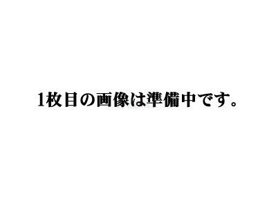 PFP ピーエフピー ドライブチェーン 530FHX-120L CBF1000 (07) YZF-R1 (09-14)